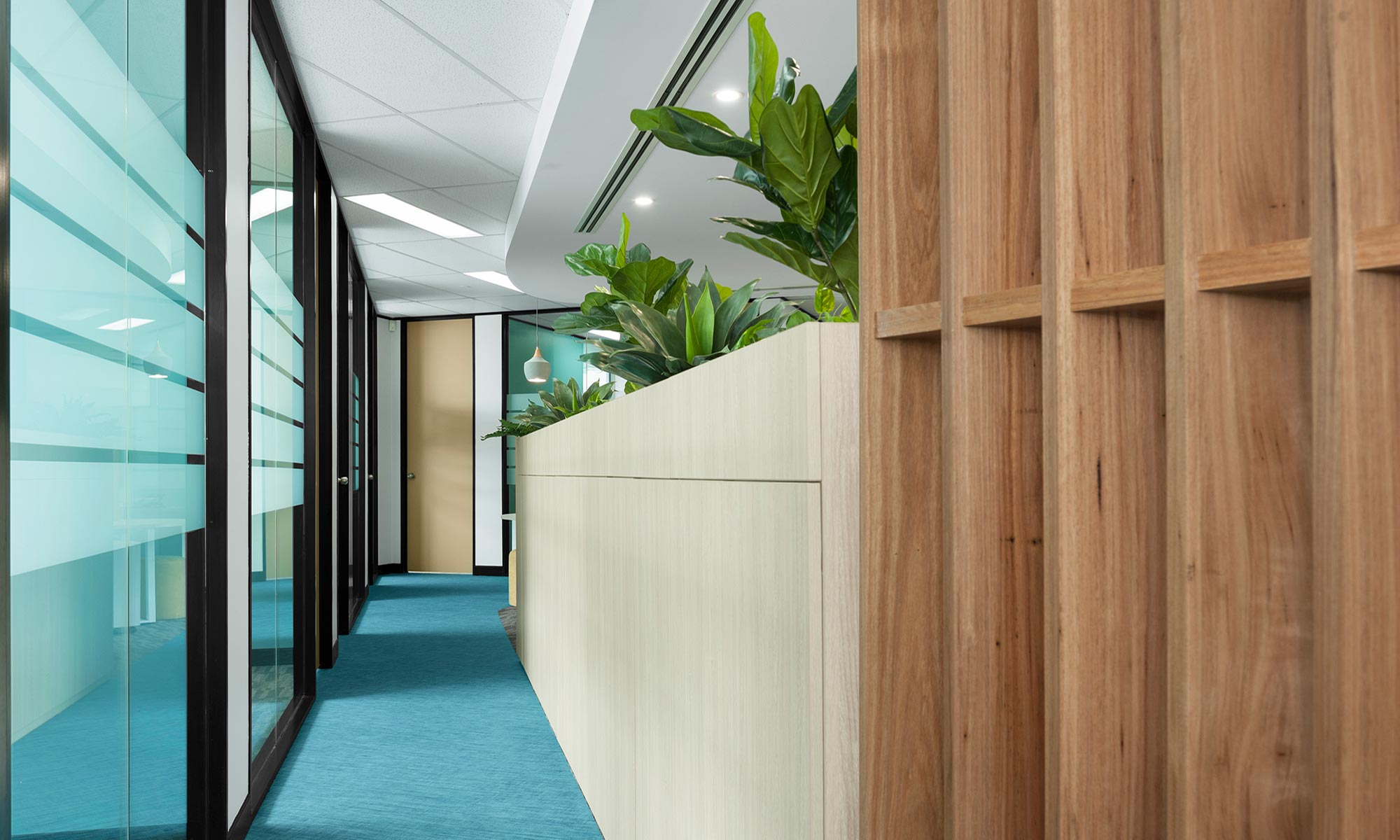 klm accountants office design fitout newcastle 03